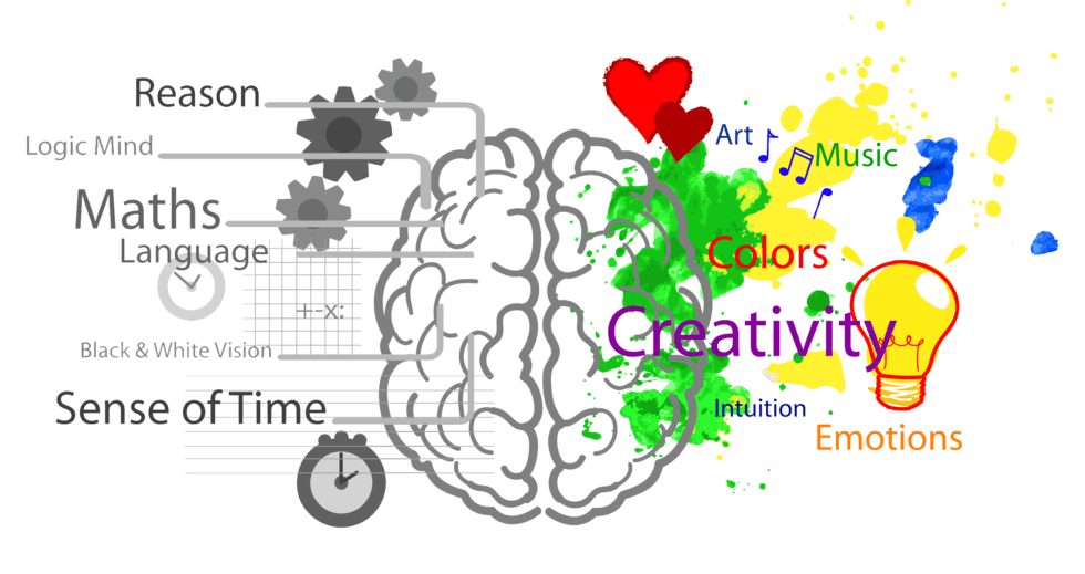 Image qualités du cerveau
